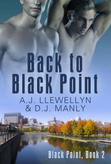backtoblackpoint2